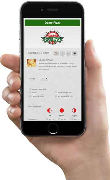 Online Ordering System Cost